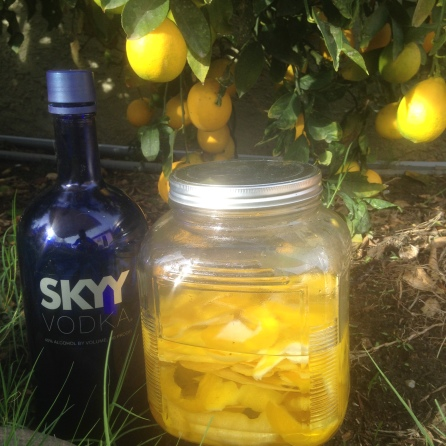 Lemon peels infused in Skyy Vodka